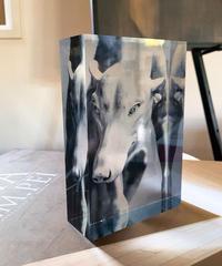 「ルーブルの犬」Vol.2