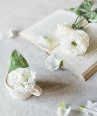 洋書と花①