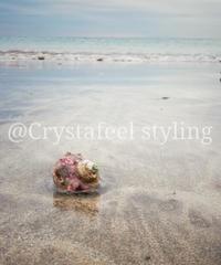 貝殻と冬の海