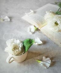 洋書と花②