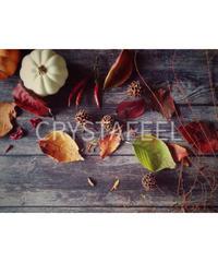 落ち葉とカボチャ