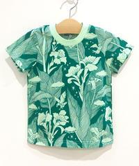 カンナの花キッズTシャツ (green)