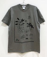 植物図鑑のTシャツ (grey)