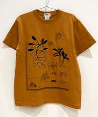 植物図鑑のTシャツ (camel)