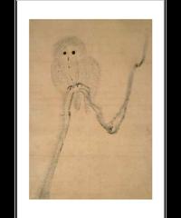 ポストカード(枯木梟図[家光])