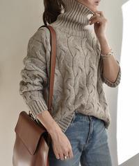 knit-02024 リブタートルネック ケーブルニット グレージュ