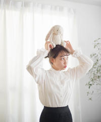 swan larme blouse