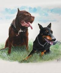 ペットの肖像画 pet portrait(A3)