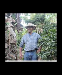 200g Honduras Fernando Contreras ホンジュラス – フェルナンド・コントレラス