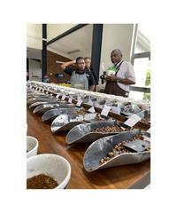 200g Kenya Gikirima SL Roast ケニア– ギキリマ SLロースト Light Roast