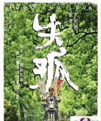 失孤[DVD]