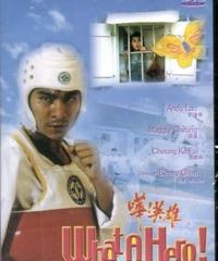 英雄烈伝(原題: 嘩!英雄)[DVD]