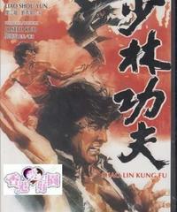 少林功夫 [DVD]