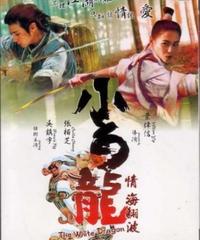 ラヴァーズ&ドラゴン (原題: 小白龍 情海翻波) [DVD]