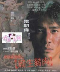 ミッドナイト・エクスプレス (原題: 黑獄斷腸歌之砌生豬肉) [DVD]
