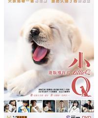 小Q[DVD]