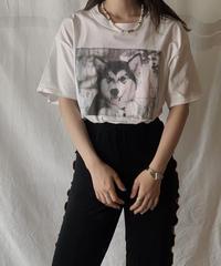【USED】S/S T-shirt DOG① /210604-003