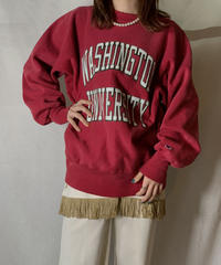 【USED】 90's USA Champion Reverse Weave Sweat WASHINGTON / 210127-030