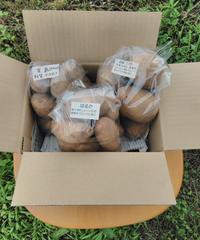 有機JAS ジャガイモ3種 食べ比べセット(850円)(とうや・はるか・男爵 各800g 計2.4㎏)送料別
