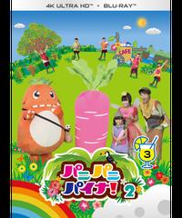 【4KUHD + Blu-ray】パニパニパイナ!2Vol.3