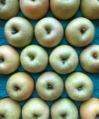 【予約販売・ご予約締切10月末 】釈迦のりんご園<直送>王林 特選5キロ 16玉