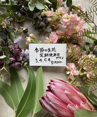 季節の生花便平日プラン 3.4.5月 送料込み
