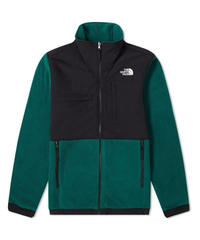 THE NORTH FACE DENALI フリースジャケット NIGHT GREEN