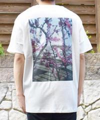 F.O.G ESSENTIALS BOXY PHOTO WHITE Tシャツ