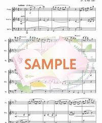 FVC009 ノクターン第2番 作品9-2/ショパン:管弦楽三重奏(フルート、バイオリン、チェロ)