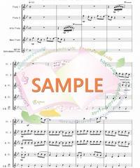 FQG013 となりのトトロ/久石譲:フルート四重奏(2Flutes,Alto-Flute,Bass-Flute/op.+Contrabass-flute)