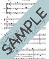 SP-FT003-01 春の声 /J.シュトラウス:フルート三重奏(2Flutes,Alto-Flute)