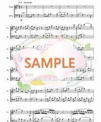 FD010 クリスマスキャロル・メドレー 2(フルートとチェロの二重奏)