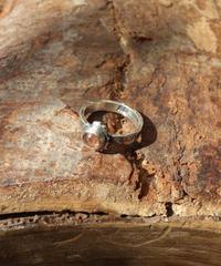 Ring - Platycerium / Sun stone【1点物】