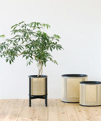 Mokuji Rattan  pot cover _鉄媒染_size L + Stand