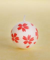 浮珠(うきだま) 桜
