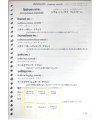 『ヴェーダ テキスト第二回配本』