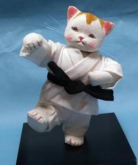空手をする猫 1