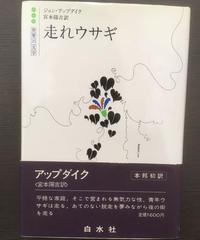 走れウサギ 白水社世界の文学