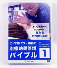 ドクター山根の治療効果倍増バイブル vol.1 山根悟