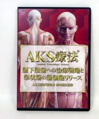 購入者限定 AKS療法® 腰下肢痛への治療戦略と梨状筋の筋細胞リリース 山内義弘