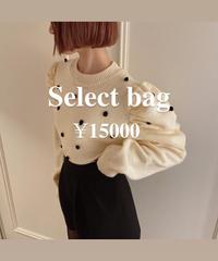 ¥15000 select bag