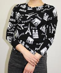 PARIS総柄Tシャツ:3色展開