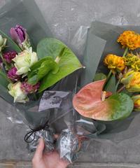 Subscription Flower (定期便)