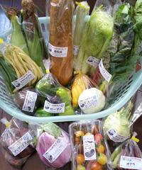 季節の変わり野菜セット(M)3,500円     (送料・税込)