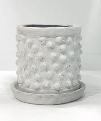 【鉢】conch antique white pot φ20