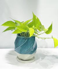 【観葉植物 】 ポトスライム /  screw pot tall   blue