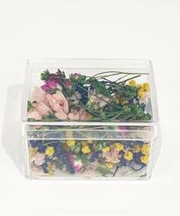 "DRY FLOWER    chip flower ""pleasure garden"""