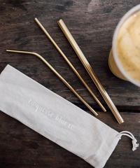 Stainless Eco Straws Set