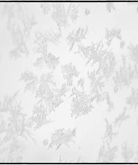 雪景「凍」 (オリジナルプリント)