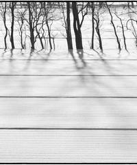雪景「射」 (オリジナルプリント)